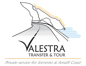 taxi valestra transfer and tour logo